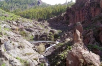 small-lake-near-roque-nublo