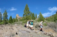 descending-from-roque-nublo